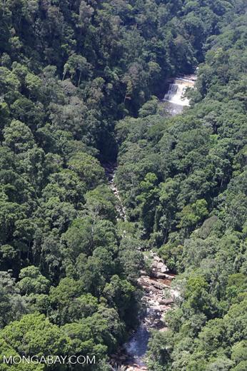 River below Maliau Falls -- sabah_aerial_1431
