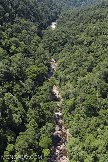 River below Maliau Falls -- sabah_aerial_1433