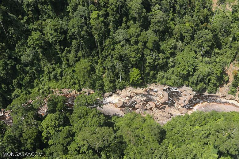 Rainforest river in Borneo -- sabah_aerial_1447