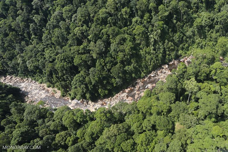 Rainforest river in Borneo -- sabah_aerial_1449