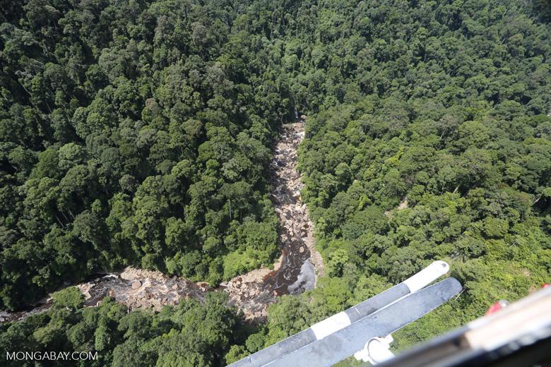 Rainforest river in Borneo -- sabah_aerial_1462