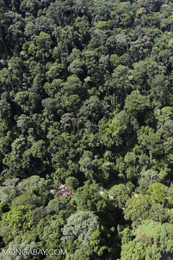 Rainforest river in Borneo -- sabah_aerial_1475