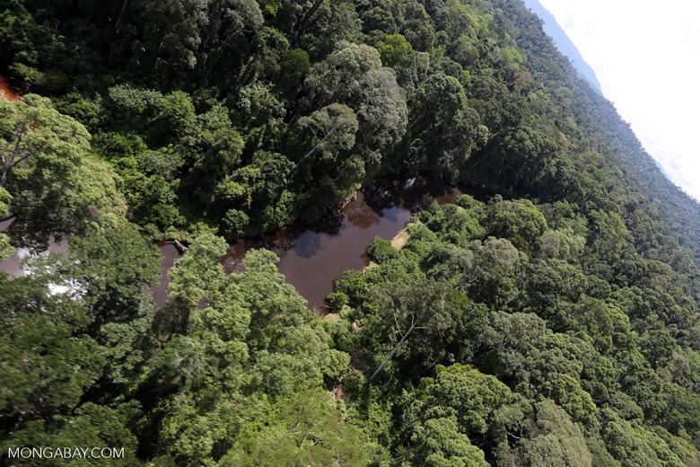 Blackwater river in Borneo -- sabah_aerial_1510