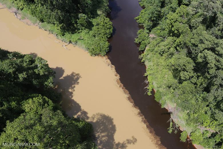 Sedimentation of a river in Borneo due to deforestation