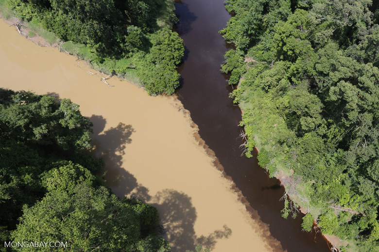 The impact of deforestation seen on a rainforest river in Borneo