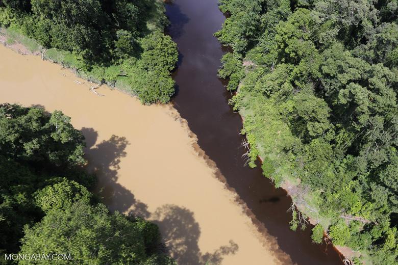 River muddied by upstream deforestation