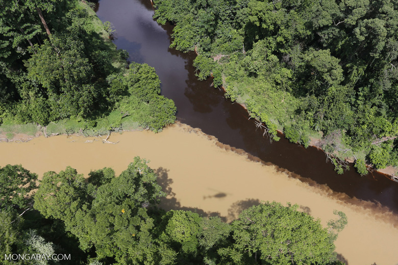 The impact of logging seen on a rainforest river in Borneo -- sabah_aerial_1529