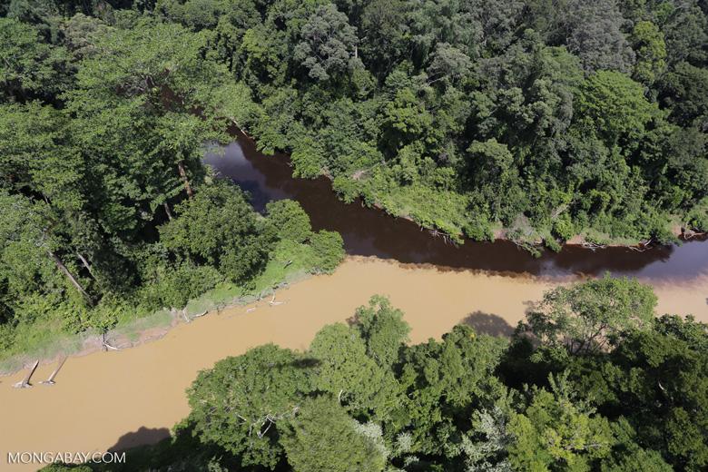 River muddied by upstream deforestation -- sabah_aerial_1533