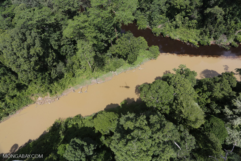 River muddied by upstream deforestation in Borneo -- sabah_aerial_1534