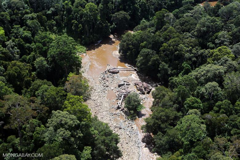 River in Borneo -- sabah_aerial_1582