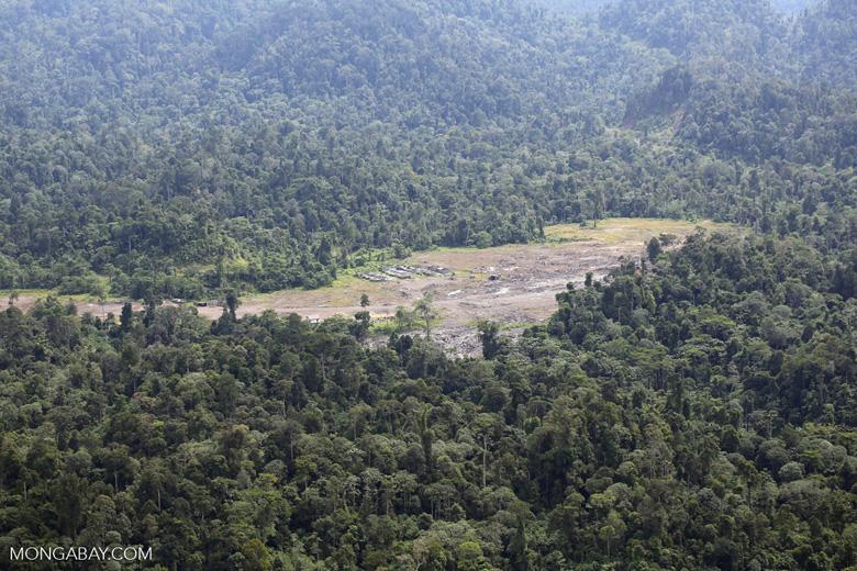 Rainforest log dump -- sabah_aerial_1766