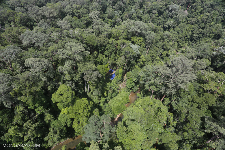 Research camp site in Imbak Canyon -- sabah_aerial_1929