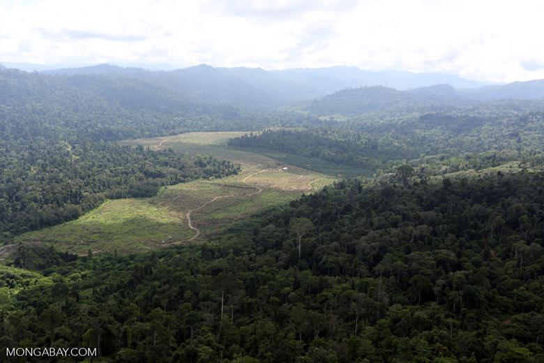 Deforested rainforest valley -- sabah_aerial_2306