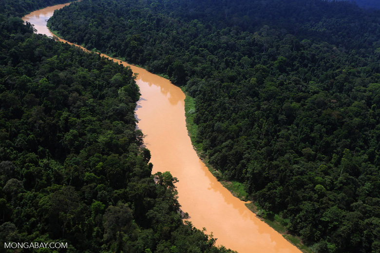 Kinabatangan River -- sabah_aerial_2477