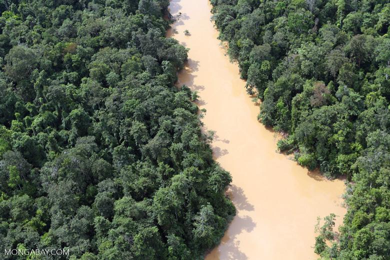 Kinabatangan River -- sabah_aerial_2854