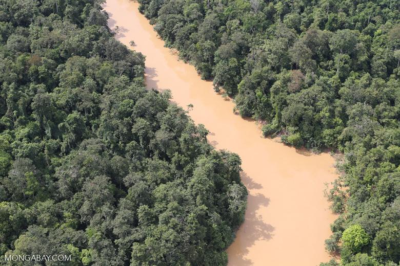 Kinabatangan River -- sabah_aerial_2862