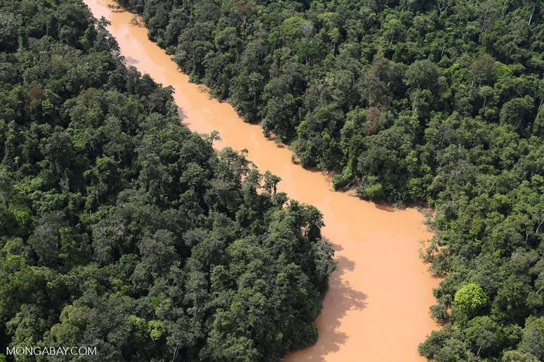 Kinabatangan River -- sabah_aerial_2865