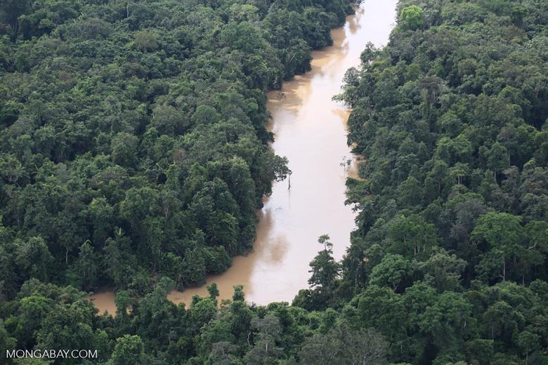 Kinabatangan River -- sabah_aerial_2876