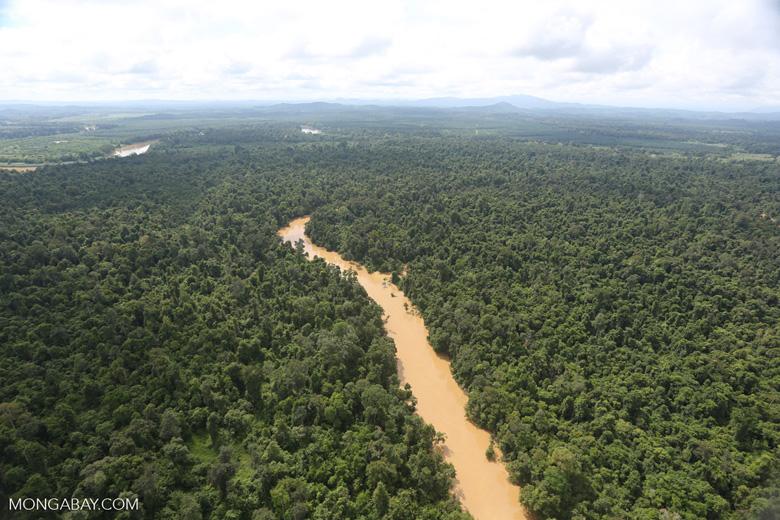 Kinabatangan River -- sabah_aerial_2899