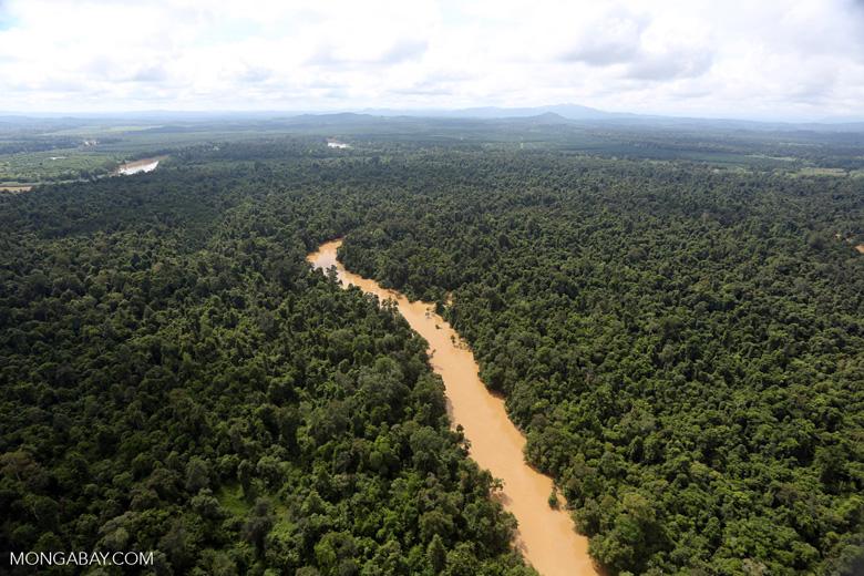 Kinabatangan River -- sabah_aerial_2900