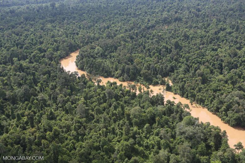 Kinabatangan River -- sabah_aerial_2907