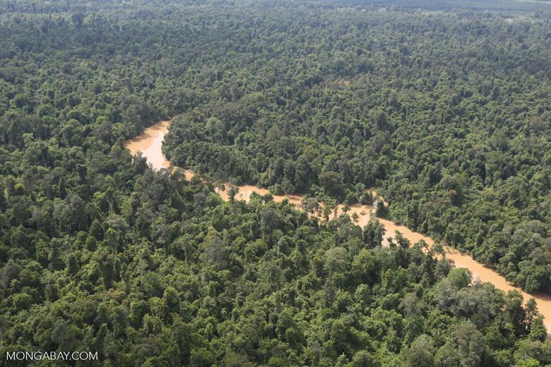 Kinabatangan River -- sabah_aerial_2911