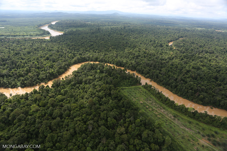 Clearing for oil palm along the Kinabatangan River  -- sabah_aerial_2938