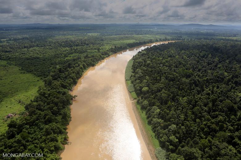 Kinabatangan River -- sabah_aerial_3046