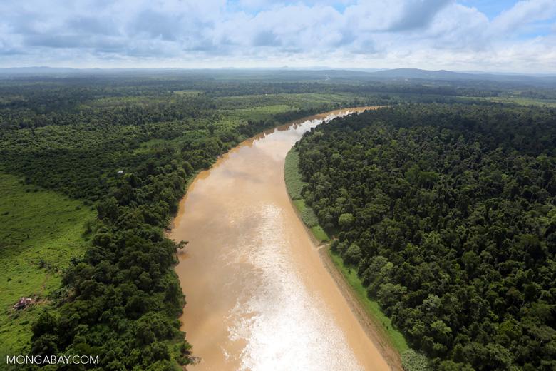 Kinabatangan River -- sabah_aerial_3048