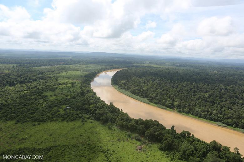 Kinabatangan River -- sabah_aerial_3055