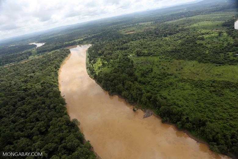 Kinabatangan River -- sabah_aerial_3059