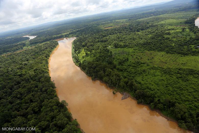 Kinabatangan River -- sabah_aerial_3060