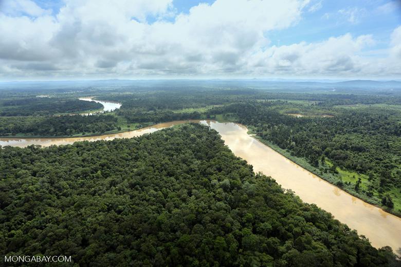 Kinabatangan River -- sabah_aerial_3064