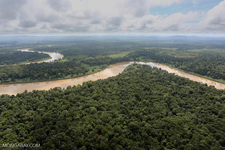 Kinabatangan River -- sabah_aerial_3066