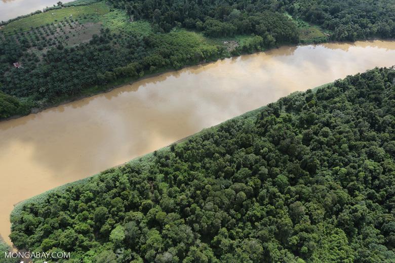 Kinabatangan River -- sabah_aerial_3072