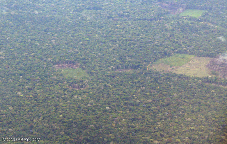 Overhead photo of deforestation in the Amazon