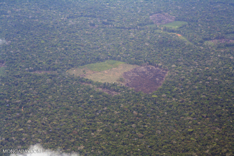 Airplane  view of deforestation in the Amazon