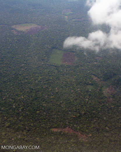 Aerial view of burning rain forest