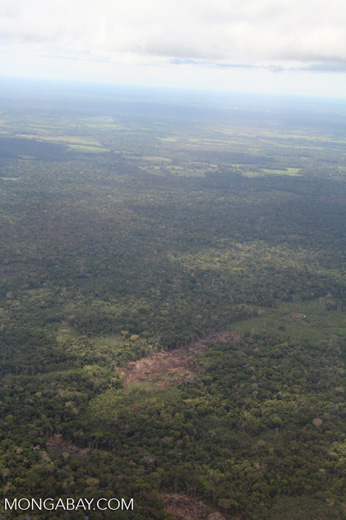 Aerial photo of deforestation in the Amazon