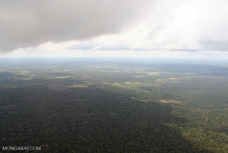 Aerial picture of deforestation in the Amazon