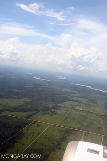 Deforestation for agriculture surrounding road in the Peruvian Amazon rainforest
