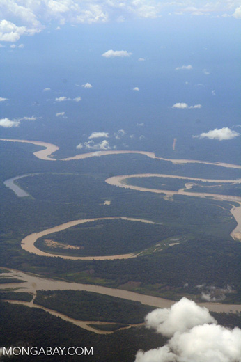 Meandering rainforest river with two oxbow lakes