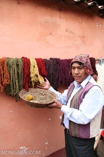 Colored fibers of alpaca and sheep wool in the Andes