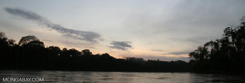 Sunrise over rainforest along the Rio Tambopata [manu-Manu_1024_2542]