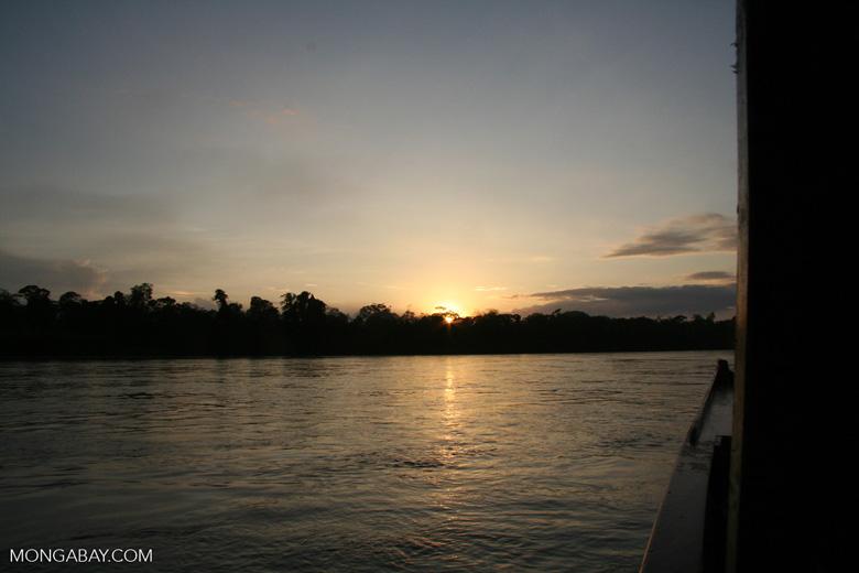 Sunrise over rainforest along the Rio Tambopata