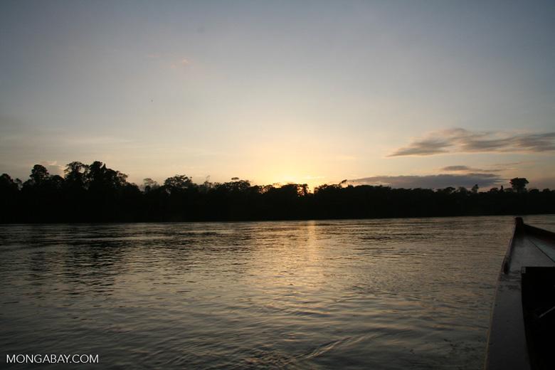 Sunrise over rainforest along the Rio Tambopata [manu-Manu_1024_2548]
