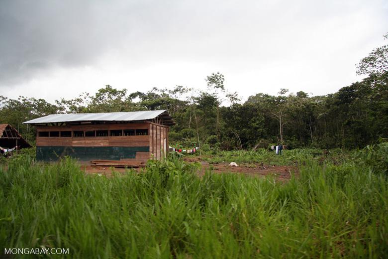 Farmhouse in the rain forest