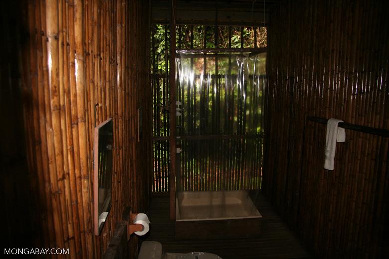Guest room at Posada Amazonas; bathroom with shower