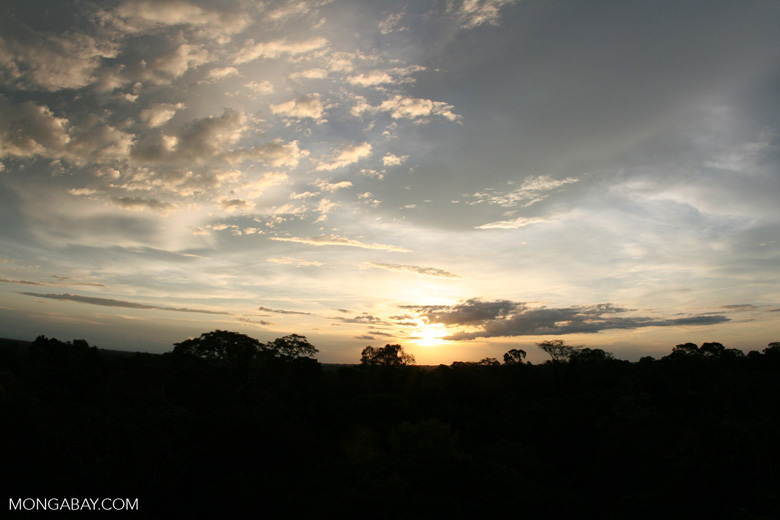 Sun setting over Amazon rainforest