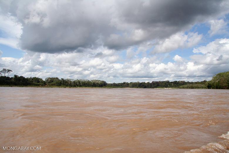 Muddy waters of the Rio Tambopata